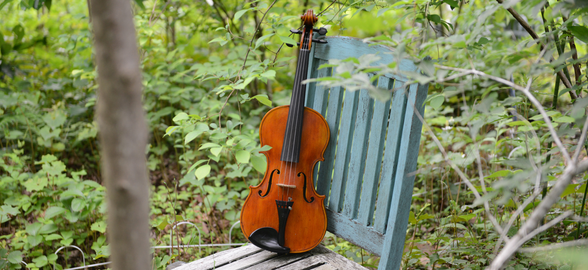 violin 01